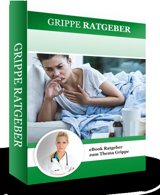 E-Book Grippe-Ratgeber