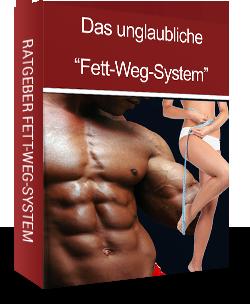 Fett-Weg-System